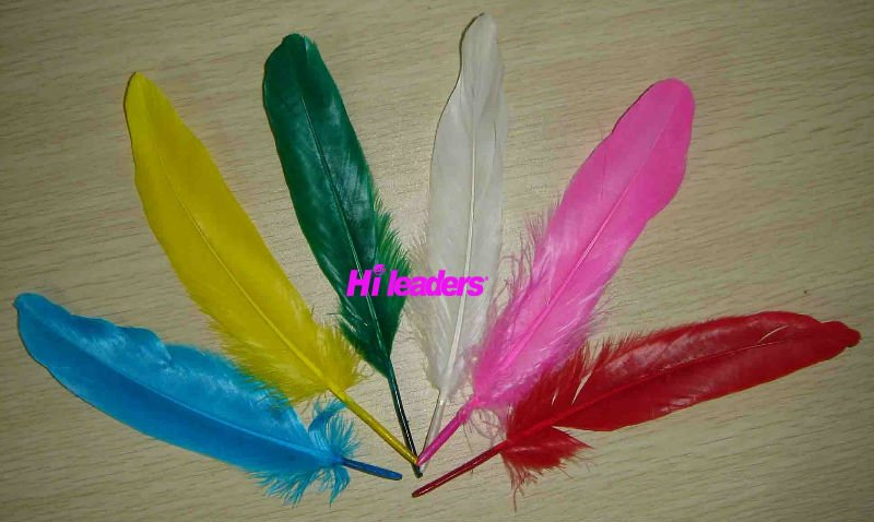 Decorative Dyed Turkey feather