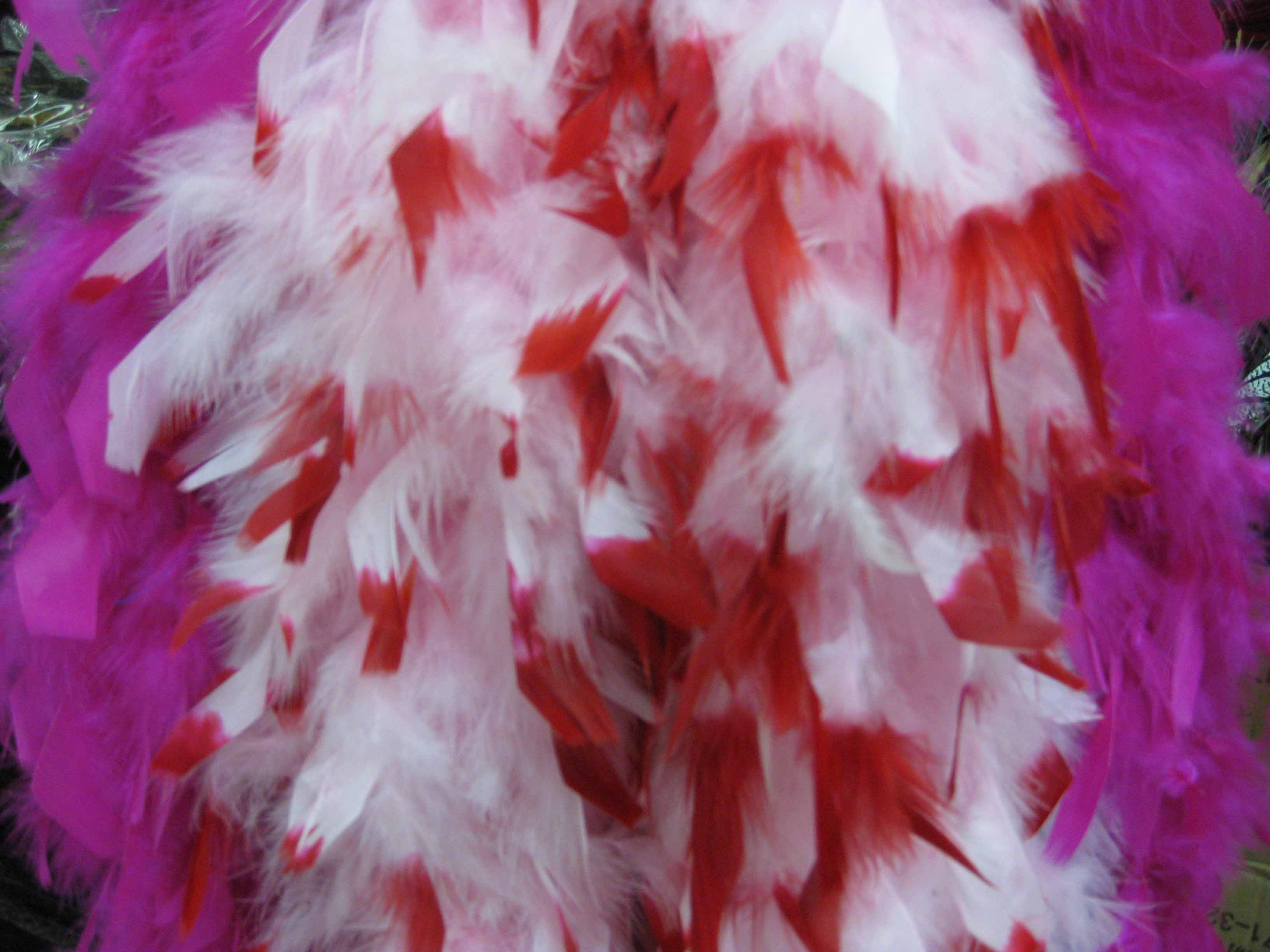 Dyed feather boa