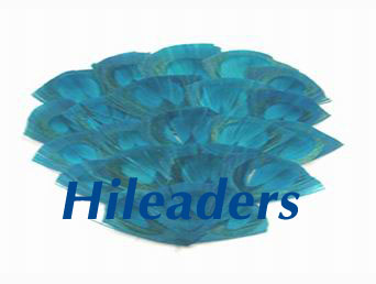 Decorative Natural hot sale feather pad