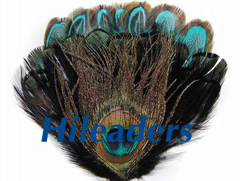 Decorative peacock  feather pad